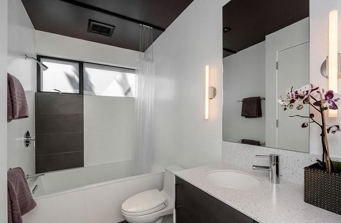 Contemporary Bathroom Ceilings - Teach Workout Love